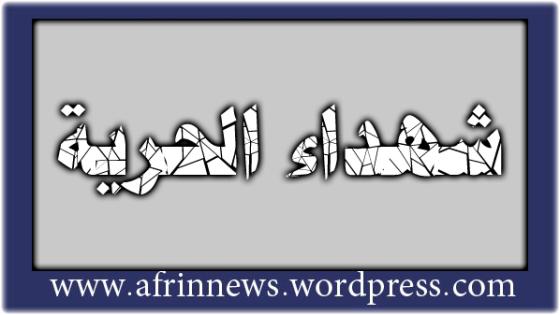 تقرير شهداء الجمعة 18-1-2013